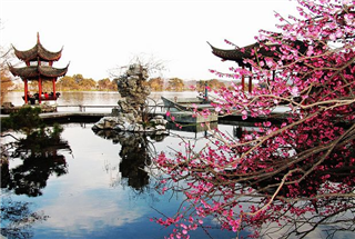 Shanghai, Hangzhou and Wuzhen Combo Tour