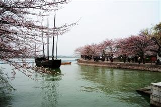 Wuxi Cruise & Garden Tour from Shanghai