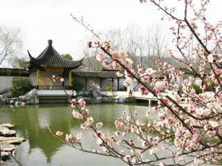 Essence of Wuxi Tour