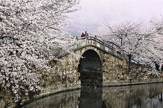Wuxi Classic Day Tour from Shanghai